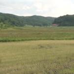ドキュメンタリー映画『飯舘村わたしの記録』上映会+講演会開催のお知らせ