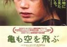 6月10日(金)の映画(瀬島)「亀も空を飛ぶ」Turtles can fly.